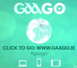 gaago-streaming